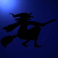 05.02.2009 - ловът на вещици в БФС започна