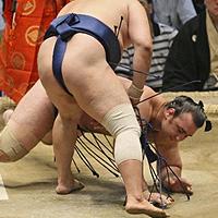 Японско списание: Котоошу урежда мачове