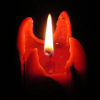 Убиха с камък от трибуните голмайстора на Алжир