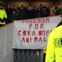 Ултраси на Ливърпул подкрепиха арестуваните фенове на ЦСКА и поискаха справедливост за тях
