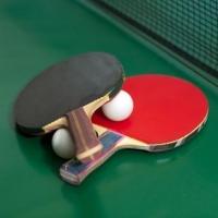 Мачовете на националите по тенис на маса по Интернет