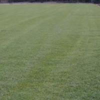 Берое се похвали с нова трева за тренировки