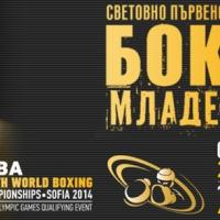 Цигански оркестър приветства нашия световен шампион по бокс Благой Найденов